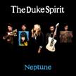 Visit The Duke Spirit