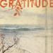 Visit Gratitude