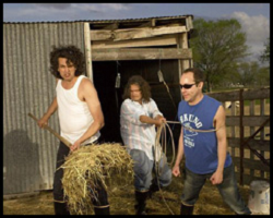 the meat puppets